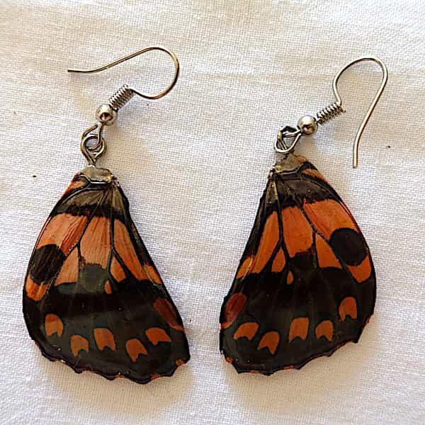 boucles d'oreilles ailes de papillon beige doré et marron